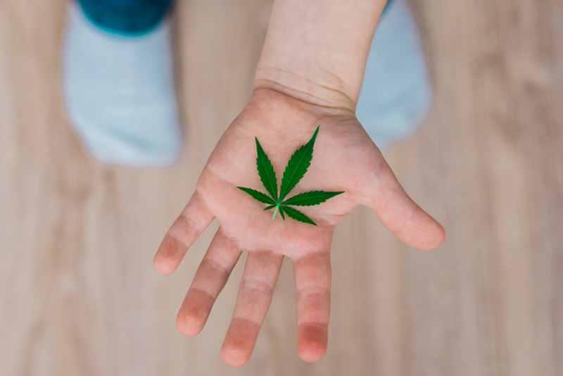 Legalized Marijuana's Impact on Teens